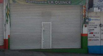 Calle 15 / Local en Renta (20-309)