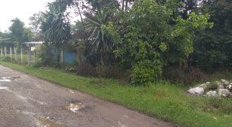 Palenque Palotal / 200 m2 / Terreno en Venta (20-320)